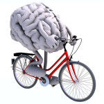 Exercise and your Brain!